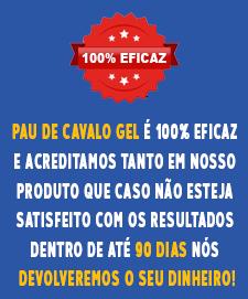 100-eficaz-pdcg-mobile-V2