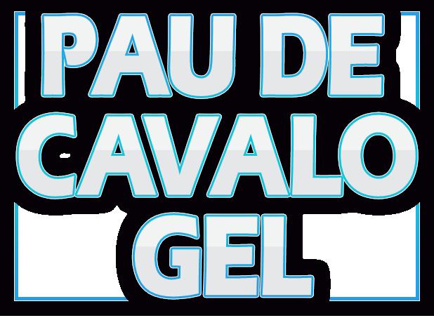 pcd-logo-grande400px